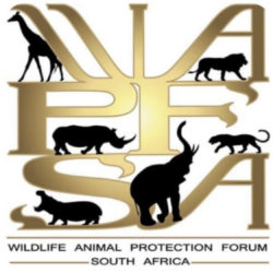 THE WILDLIFE ANIMAL PROTECTION FORUM South Africa